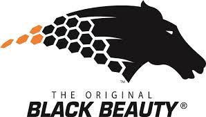 black_beauty.jpeg