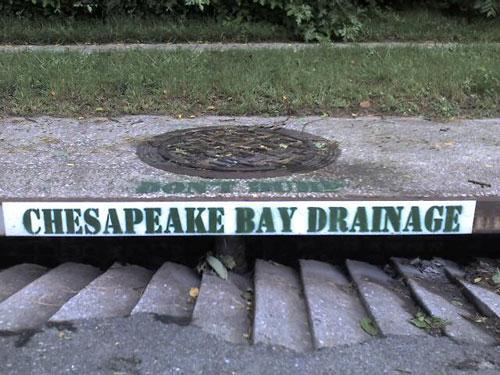 Cheseapeake_Bay_Sealcoating.jpg